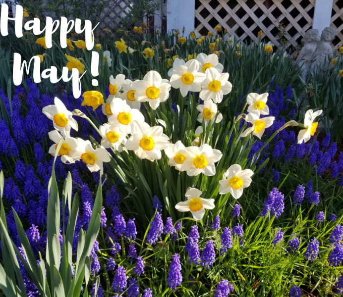 Happy May!